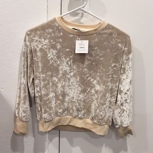 Creme colored velvet top